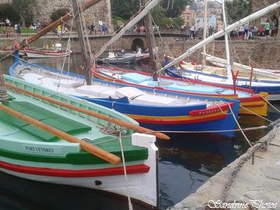 Collioure, Pyrénées orientales, Ville balnéaire de la côte Vermeille, Sud de la France (8)
