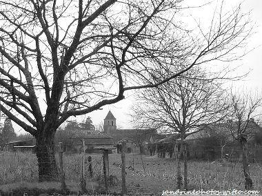 L`église de Bouresse vue du Chemin du Petit Bois