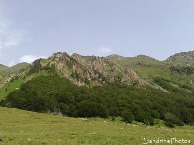 Orlu, Réserve naturelle de faune et de flore, Ariège, Paysages de France, Pyrénées ariégeoises, SandrinePhotos Esprit Nature juillet 2016 (78)