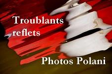 Polani- Annie Bars